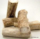Antler Horn & Alligator Bone Pen Blanks