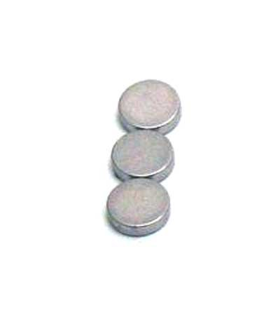 Rare Earth Magnets: 1/4 in. x 1/10 in. (20 pack)